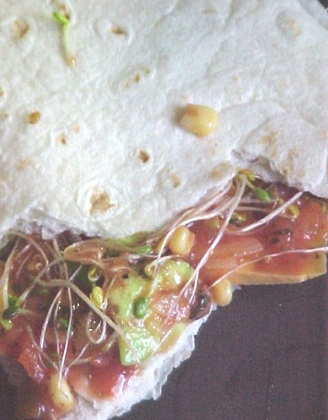 Close up picture of the icky-looking burrito!